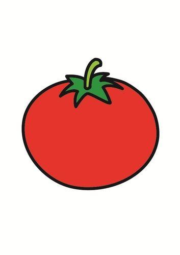 tomaat tomaten afbeeldingen tekenen