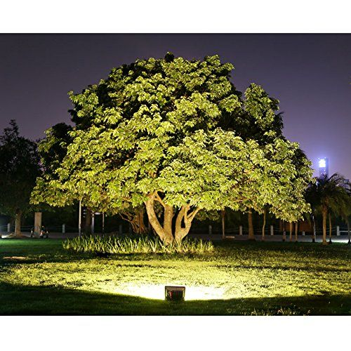 Why Led Outdoor Flood Lights Are Better Than Halogen Flood Lights Outdoor Flood Lights Outdoor Tree Lighting Outdoor Lighting