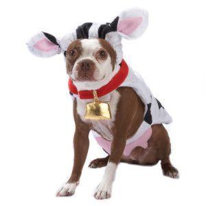 Pethalloween By Top Paw Cow Halloween Costume Petsmart Dog