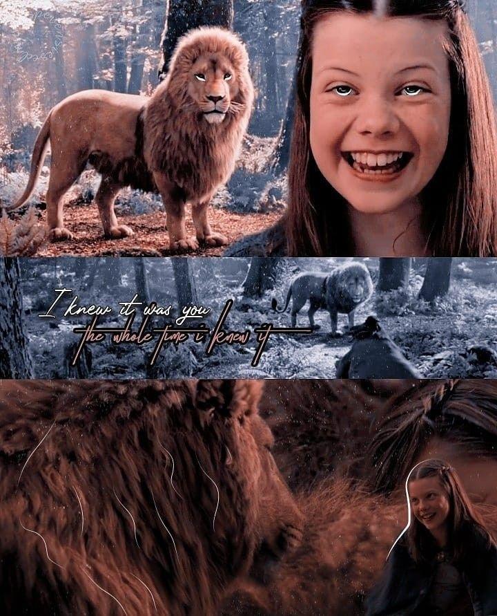 Narina image by brianna farrell | Narnia, Aslan, Poster