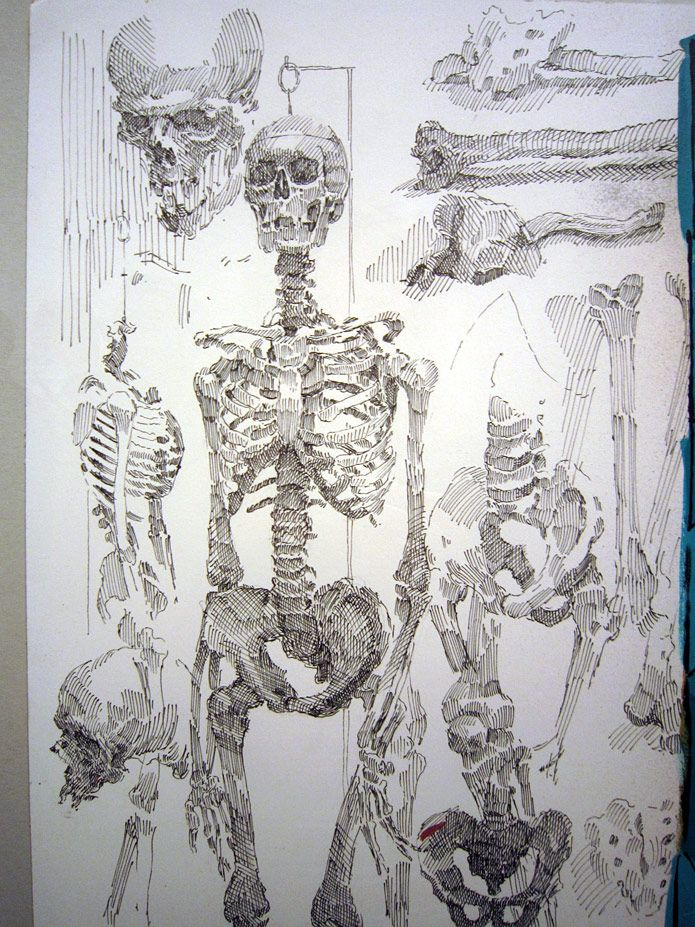 ARYZ at Fifty24SF | Art class | Pinterest | Anatomía, Dibujo y Arte ...