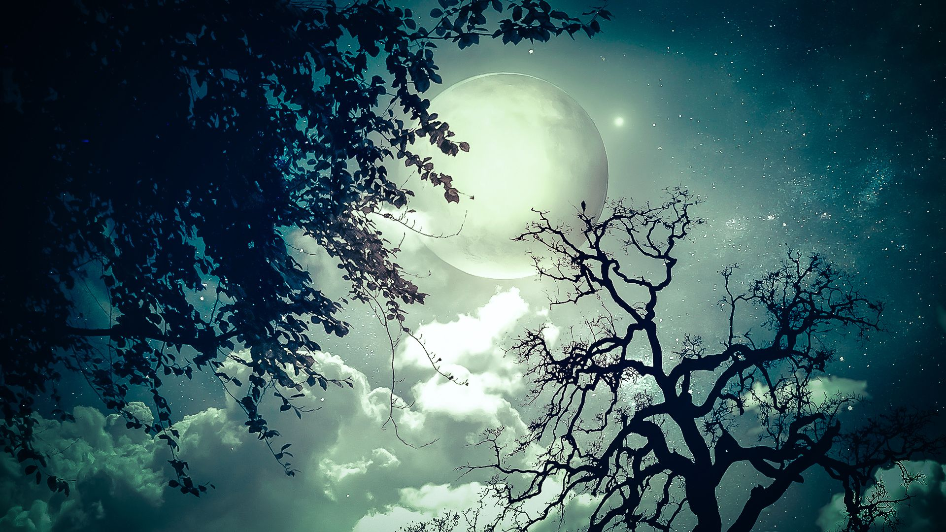 Full Moon - 3D and CG &amp- Abstract Background Wallpapers on Desktop ...