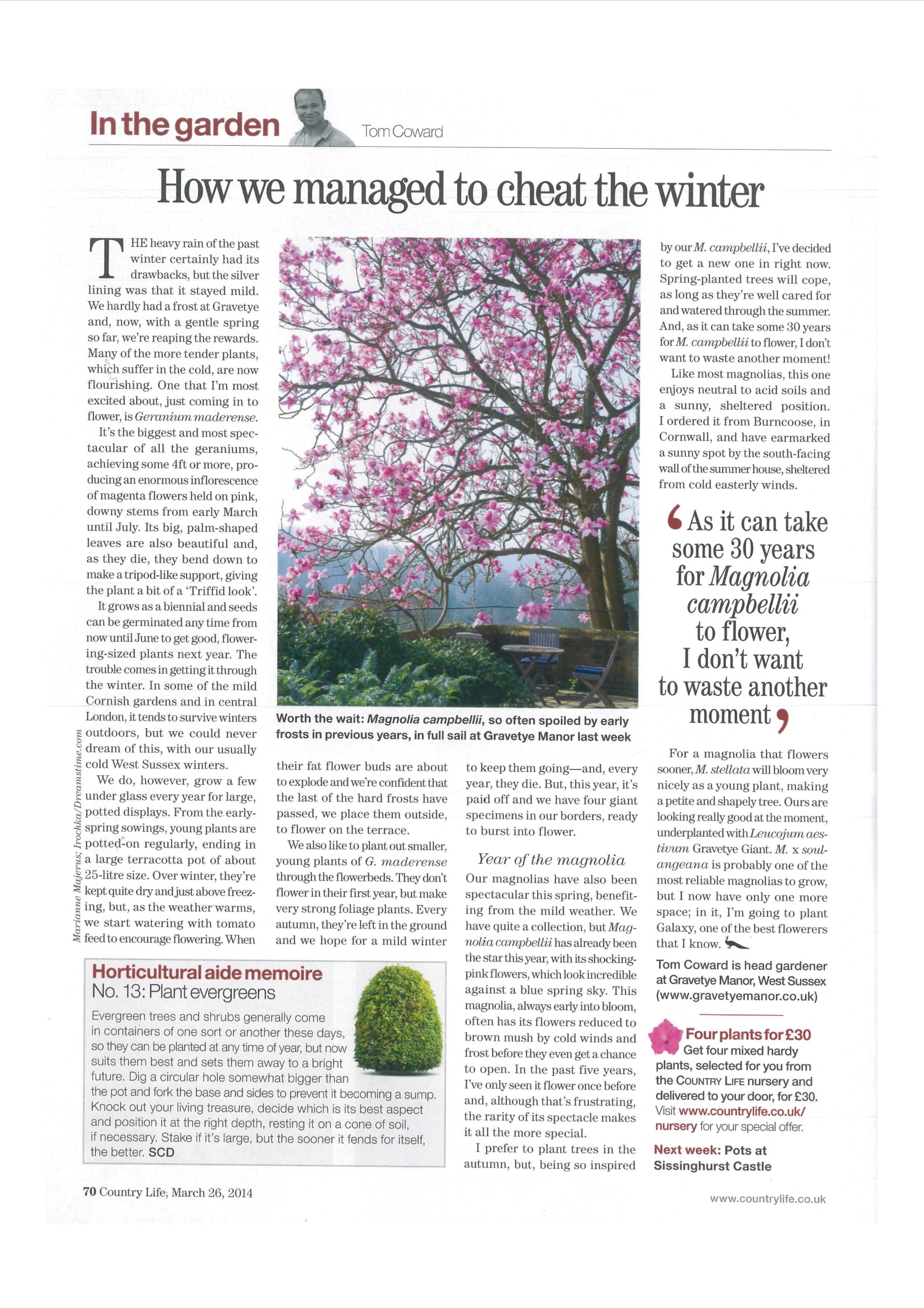 Tom Coward's column in Country Life - March 2014