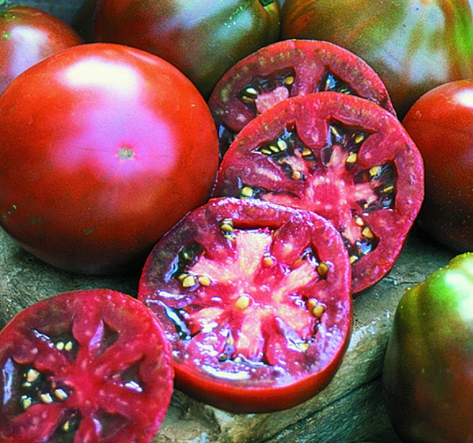 Anese T Another Deep Coloured Tomato Great Tasting