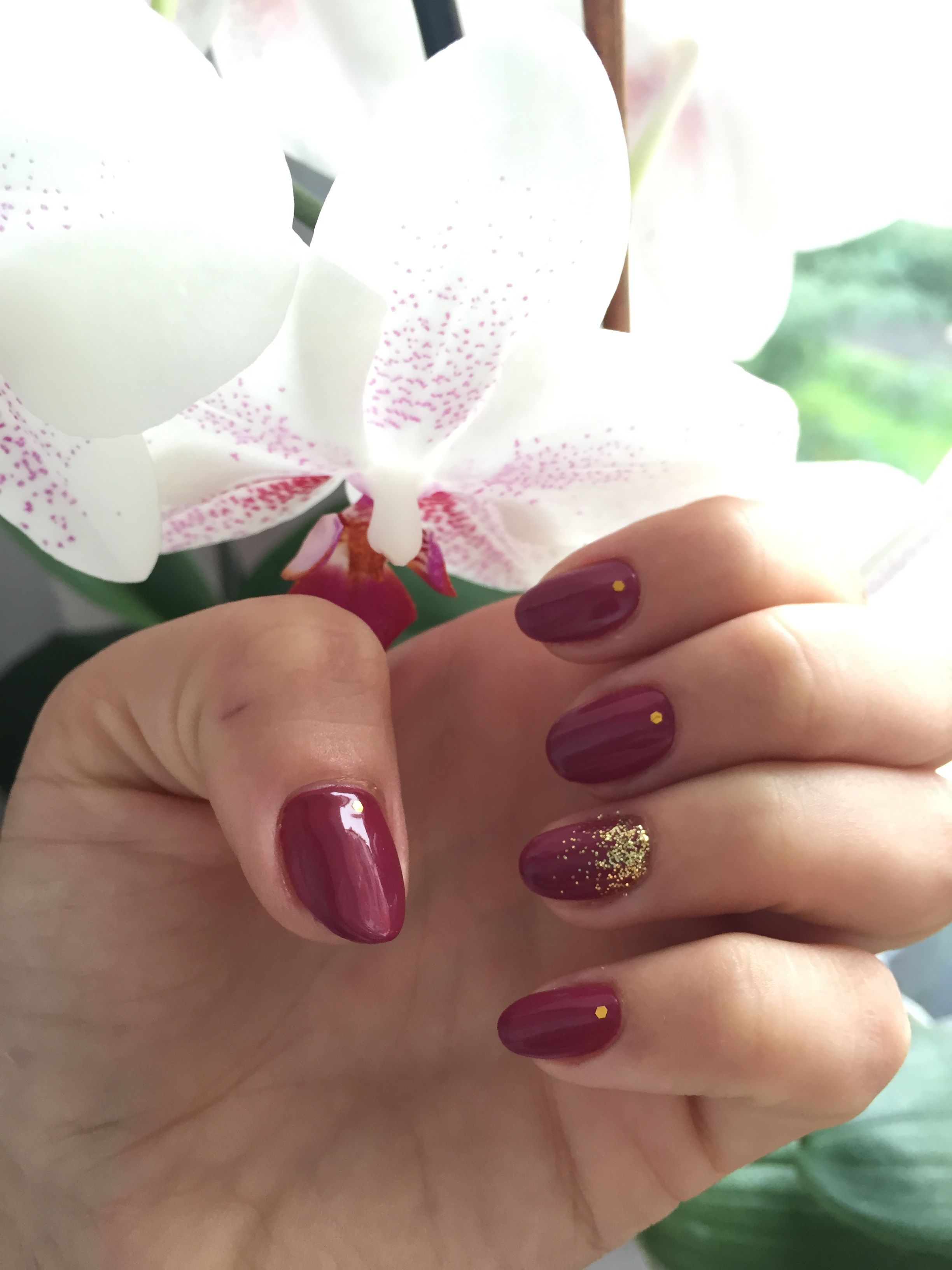 Manicure Marsala: ideas for design