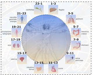 cerchionelgrano: La medicina tradizionale cinese decreta l'orologio degli organi