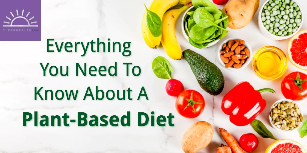 Everything You Need To Know About A Plant Based Diet Plant Based Diet Plant Diet Plant Based