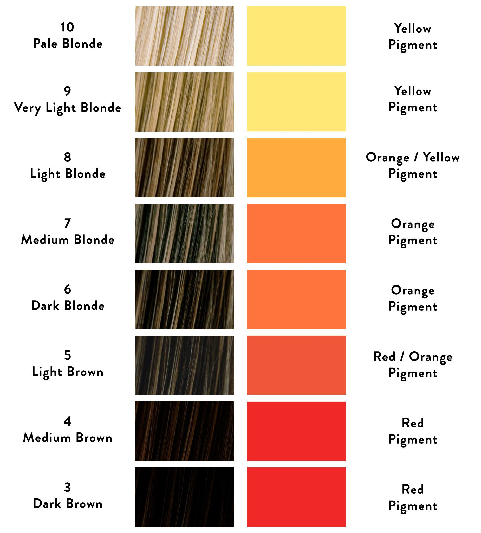 Why Is My Hair Colour Brassy And How Can I Stop It From Happening Hair Color Formulas Color Correction Hair Hair Color Wheel