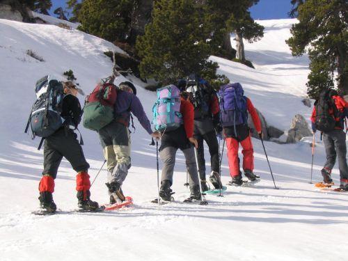 Montée du Pic de Tourelle dans les Pyrénées Béarnaises.  Le site officiel des Pyrénées Béarnaises:  pyrenees-bearnaises.com