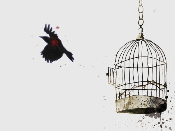 Breaking Free Cage Tattoos Bird Cage Freedom Tattoos