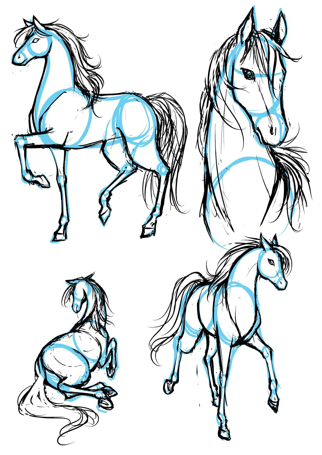 How To Draw Manga Horses Animal Sketches Animal Drawings