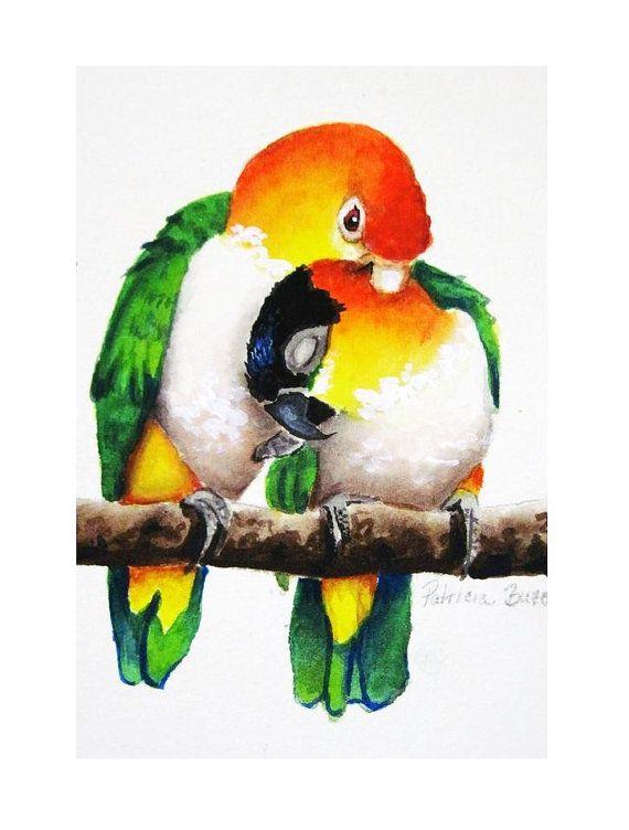 Caique Love Watercolor Parrot Parrots Art Art Prints