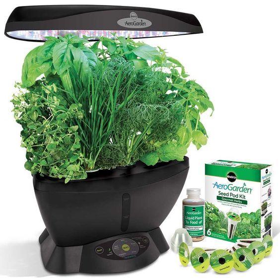 5 Best Indoor Herb Garden Kit Reviews Hydroponic Herb 640 x 480