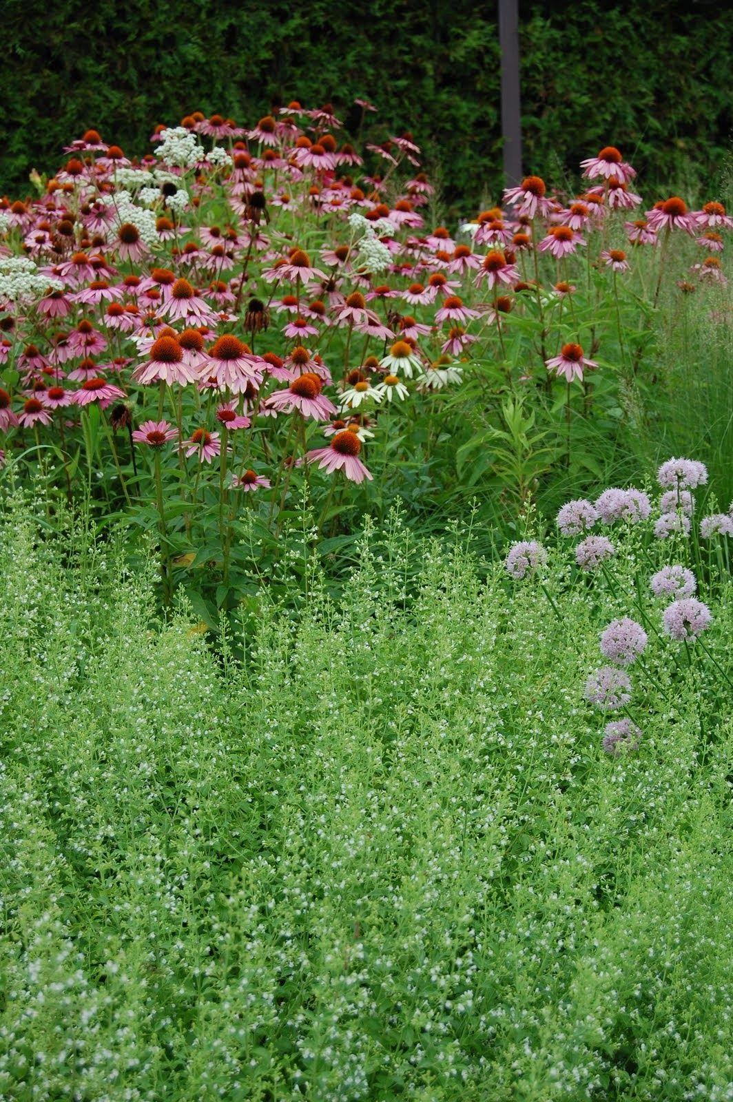 gardener in a forest: my day with roy diblik | outdoor | pinterest, Gartengerate ideen