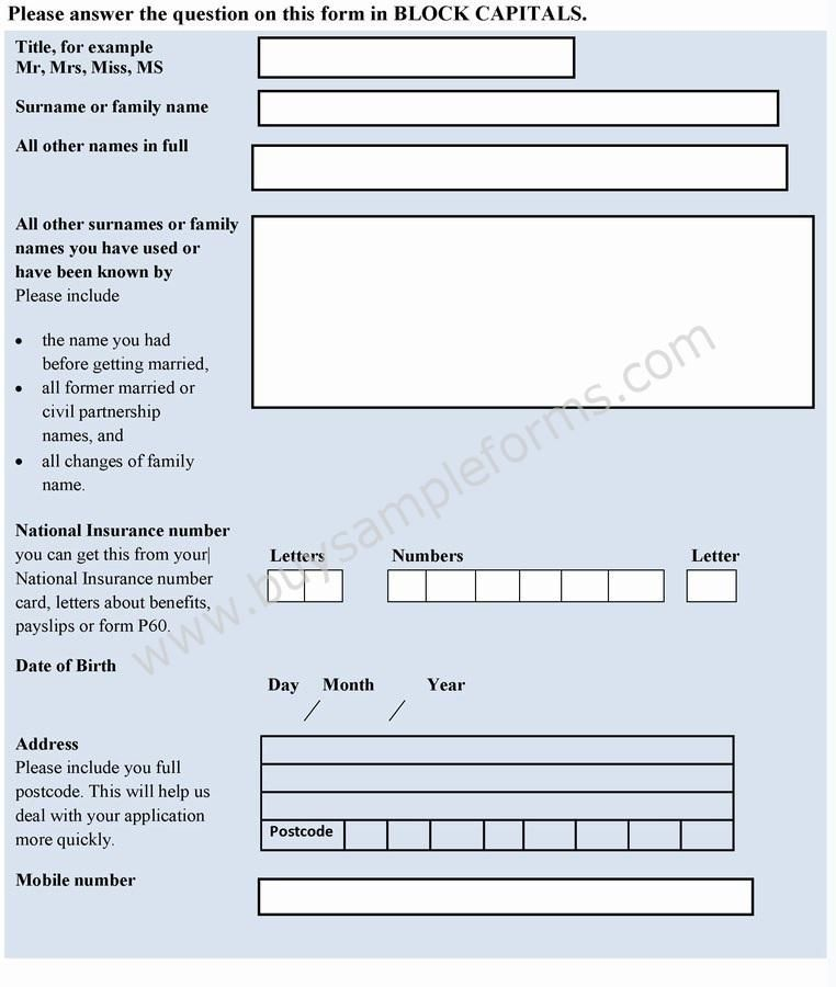 credit application form template online application forms