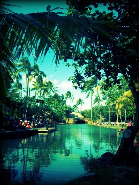 Polynesian Cultural Center....wish we would have seen this when we were in Hawaii..#onlyinhawaii