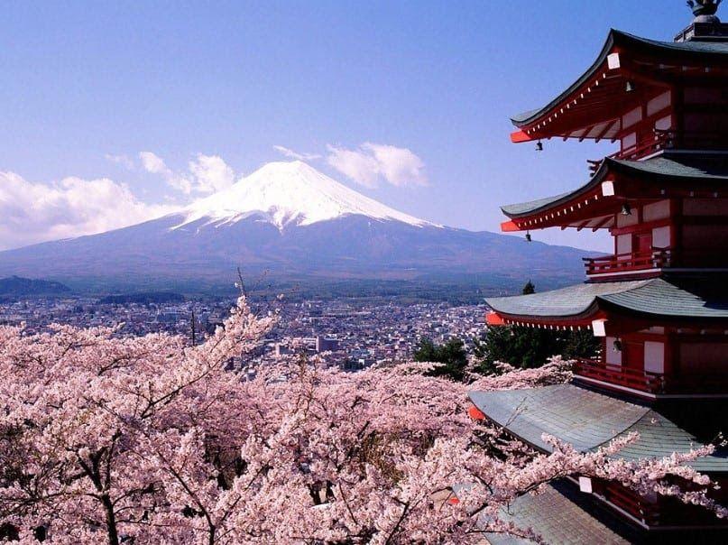 Terbaru 23 Gambar Wallpaper Bunga Gunung Laut Pantai Gunung Hutan Atau Apa Download Gambar Wallpaper Bunga Sakura Jepang Di 2020 Pemandangan Air Terjun Iguazu Danau