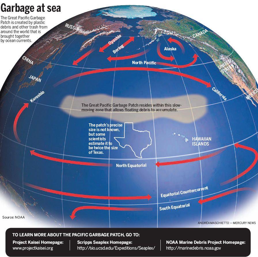 ocean trash map | common debris trash in the ocean kills more than one million seabirds ...