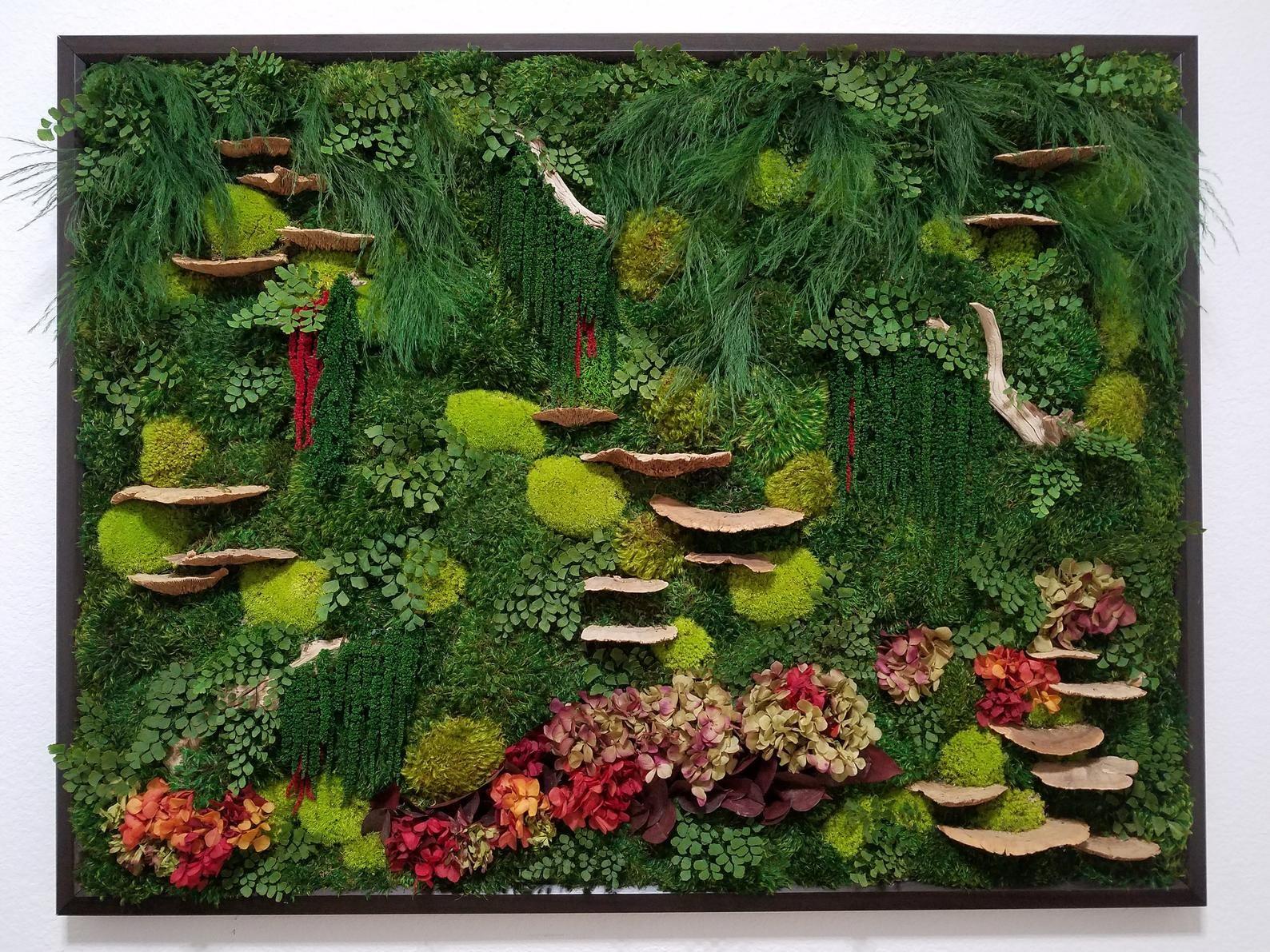 Framed real moss wall art custom 51x40 moss wall art