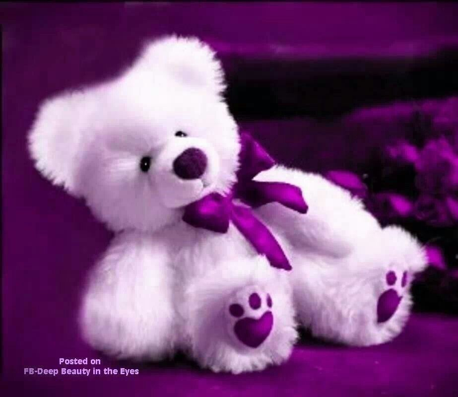 Pretty purple teddy bear all things purple pinterest purple pretty purple teddy bear altavistaventures Images