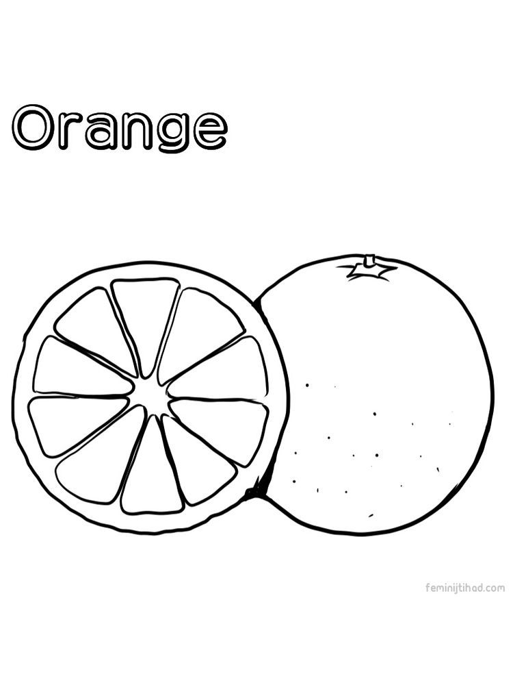 Orange Coloring Picture Print In 2020 With Images Fruit