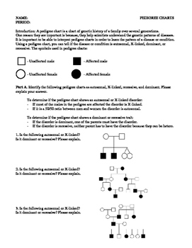 Pedigree Worksheet Answers - worksheet
