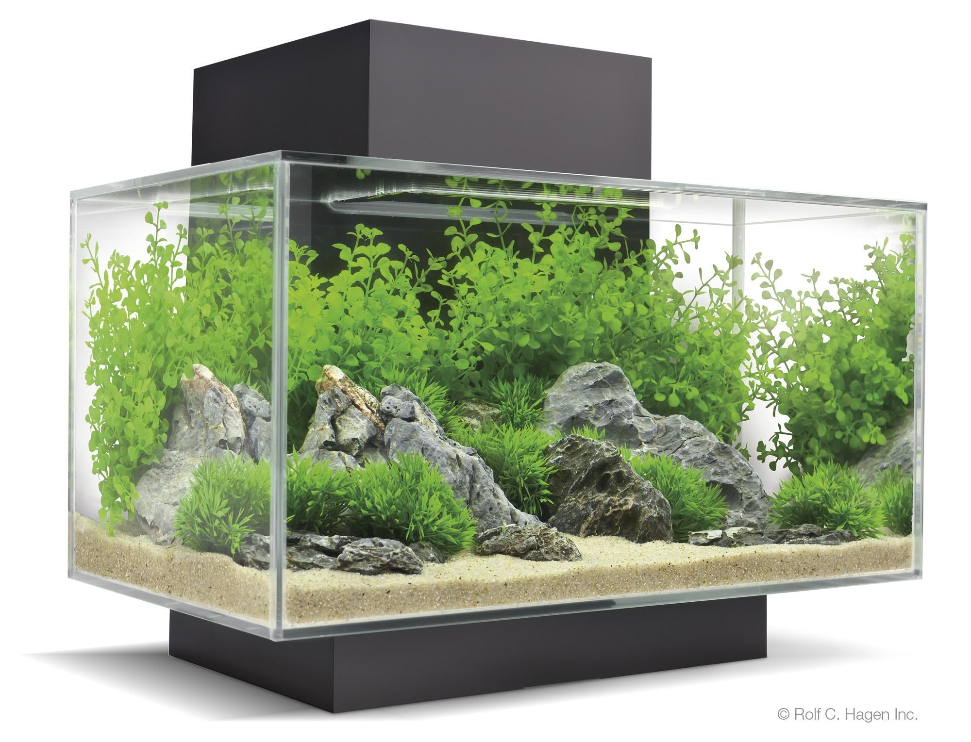 Fluval edge fish aquarium tank plant glass with led light for Fluval fish tank