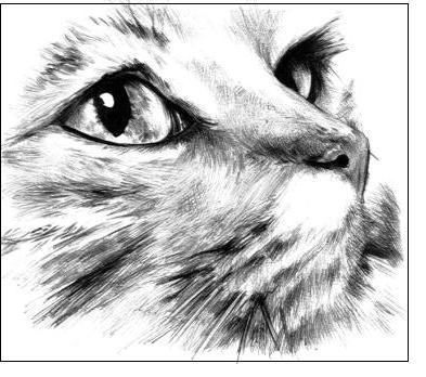 Resultado de imagen para dibujos a lapiz  Pencil Drawings7u7