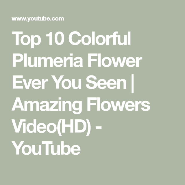 Top 10 Colorful Plumeria Flower Ever You Seen | Amazing Flowers Video(HD) - YouTube