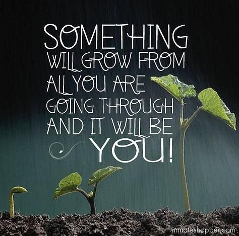 Inmate Shopper Prisoner Inmate Resources Prisoner Inmate Services Prison Quotes Inspirational Quotes Inspirational Words
