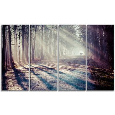 DesignArt 'Strong Sunbeams in Thick Forest' 4 Piece Photographic Print on Wrapped Canvas Set