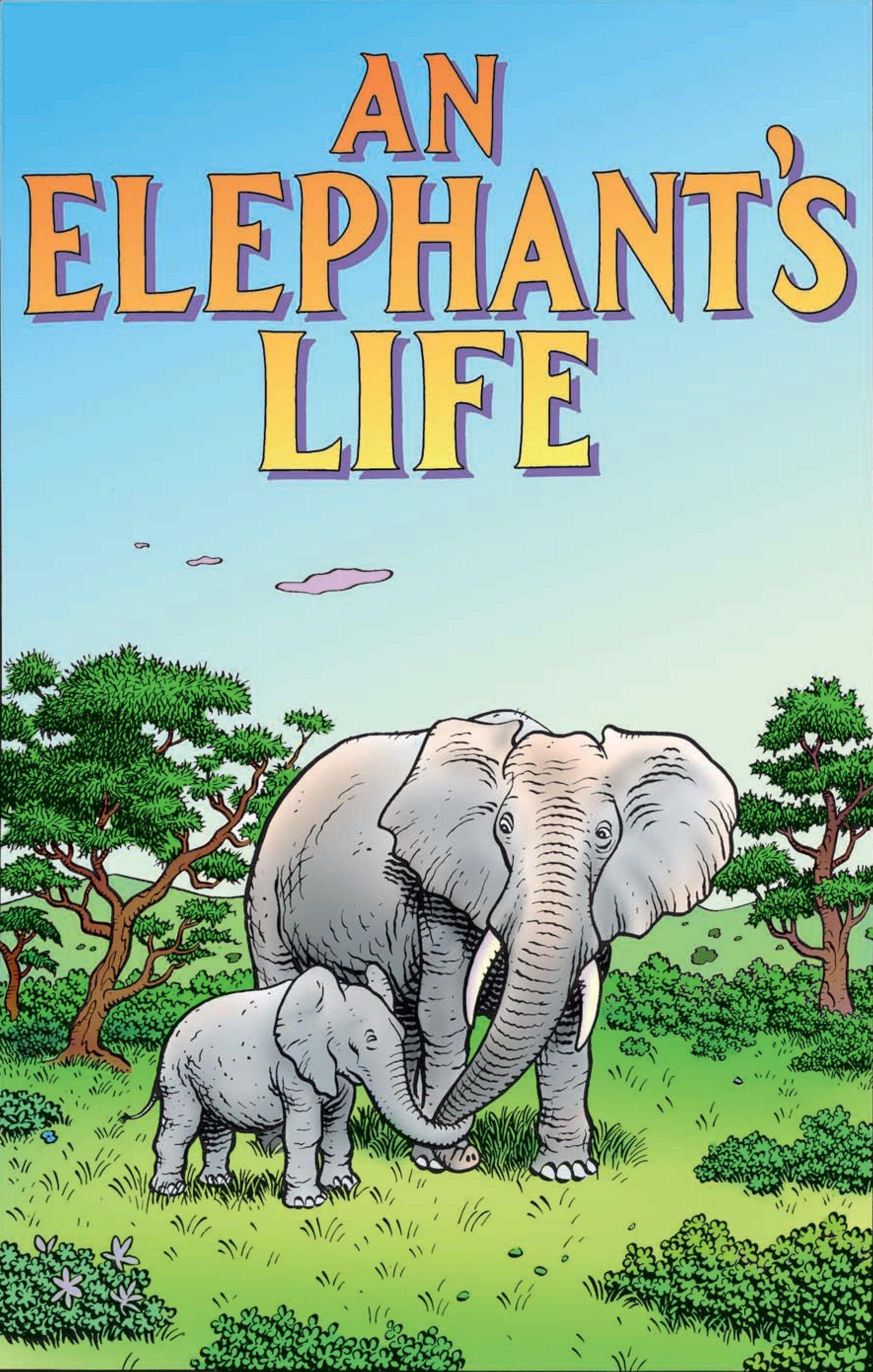 An Elephant S Life