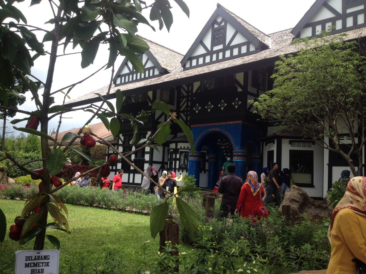 flower garden beautiful hobbit's house the hobbit milk