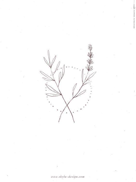Photo of Wild flowers illustrations