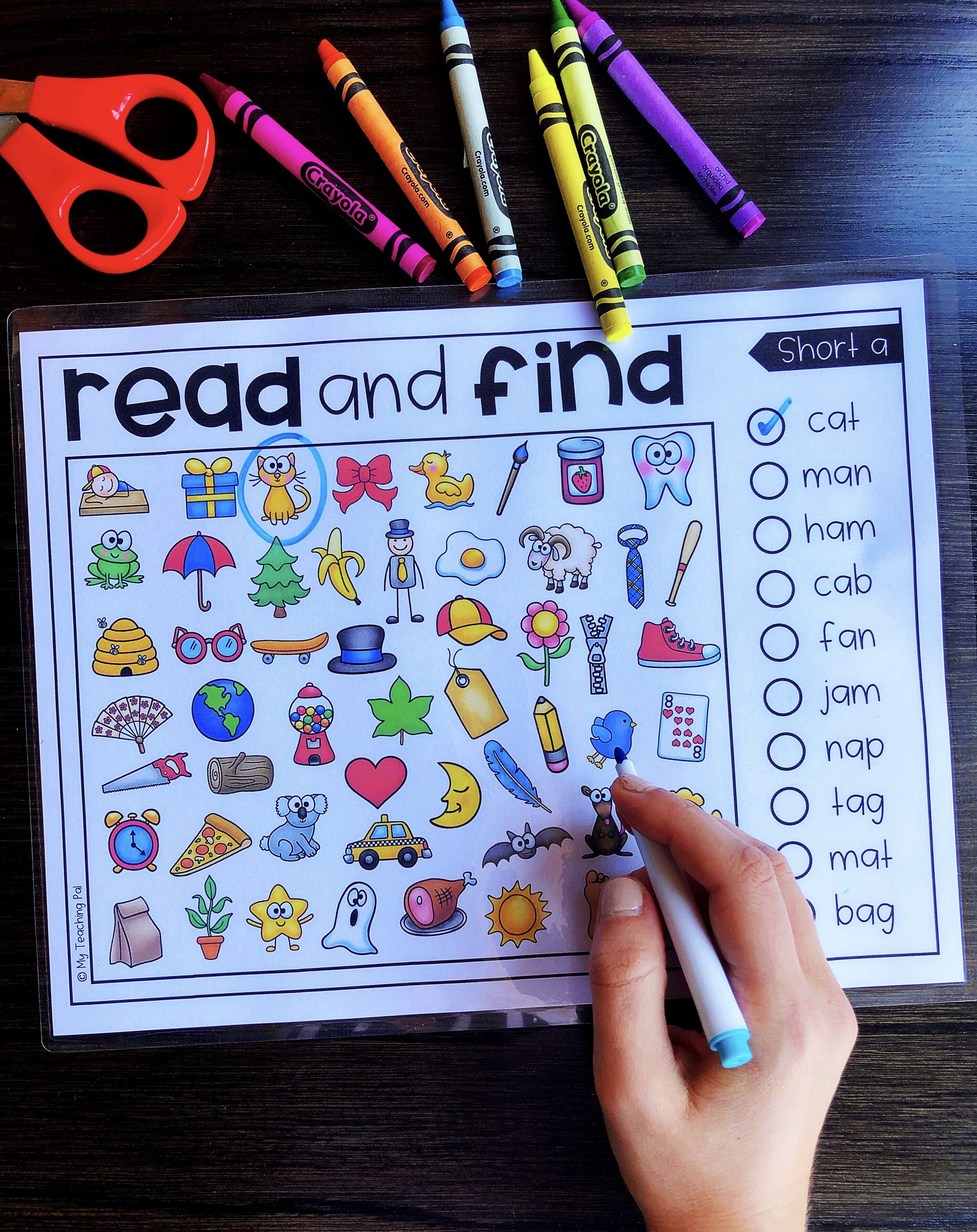Read And Find Picture Puzzles