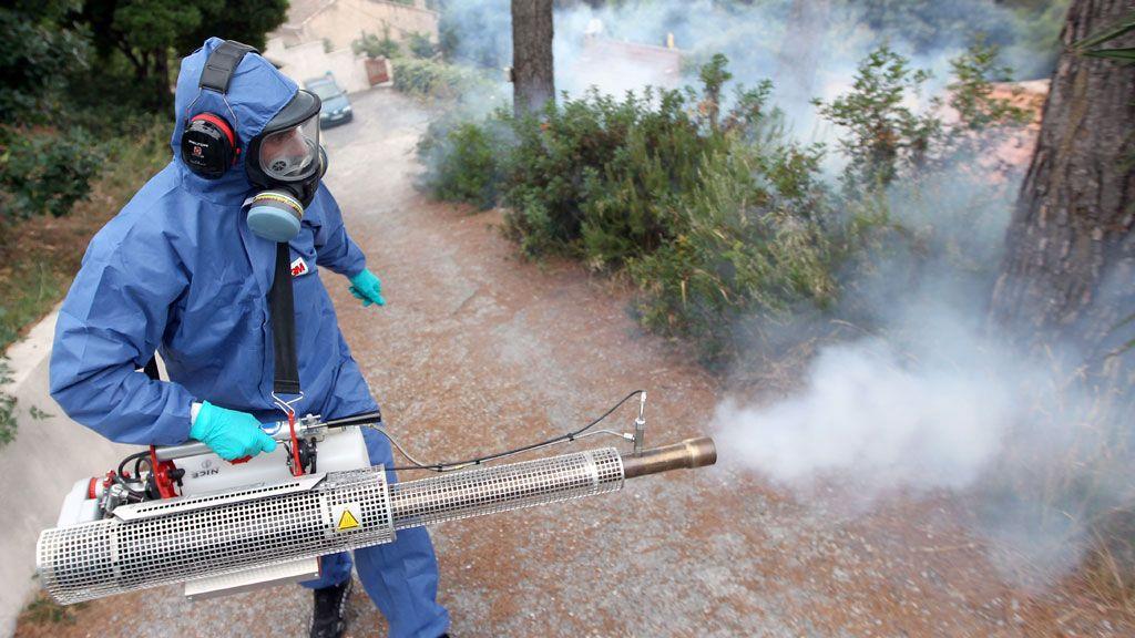 شركة رش مبيدات بنجران Cleaning Services Company Companies In Dubai Outdoor Power Equipment