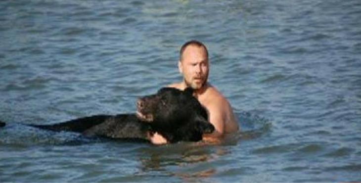 Il risque sa vie pour sauver cet ours terrorisé en train de se noyer