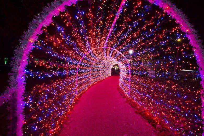 Garden Glow at the Missouri Botanical Garden Holiday