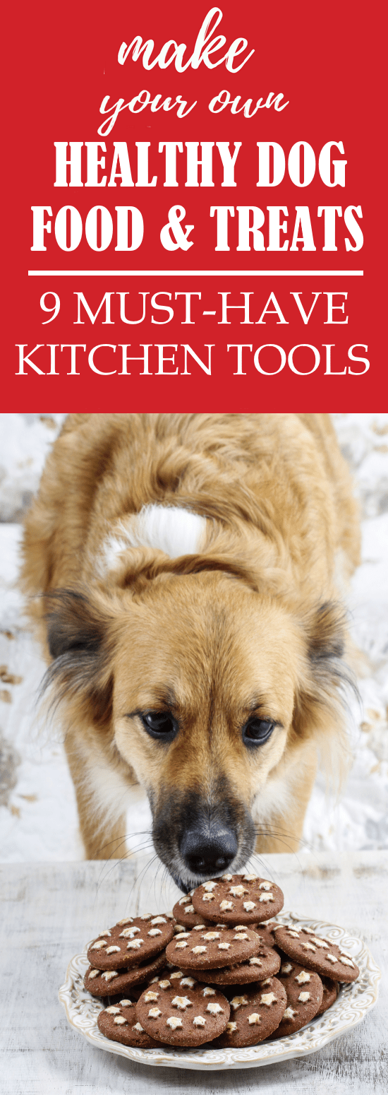 9 must have kitchen tools if you love making healthy dog food