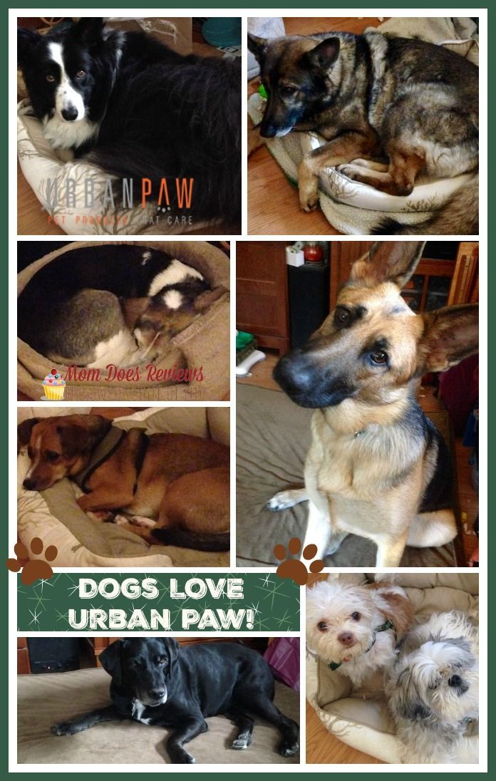 Urban Paw Pet Products Give Back Review ChristmasMDR15