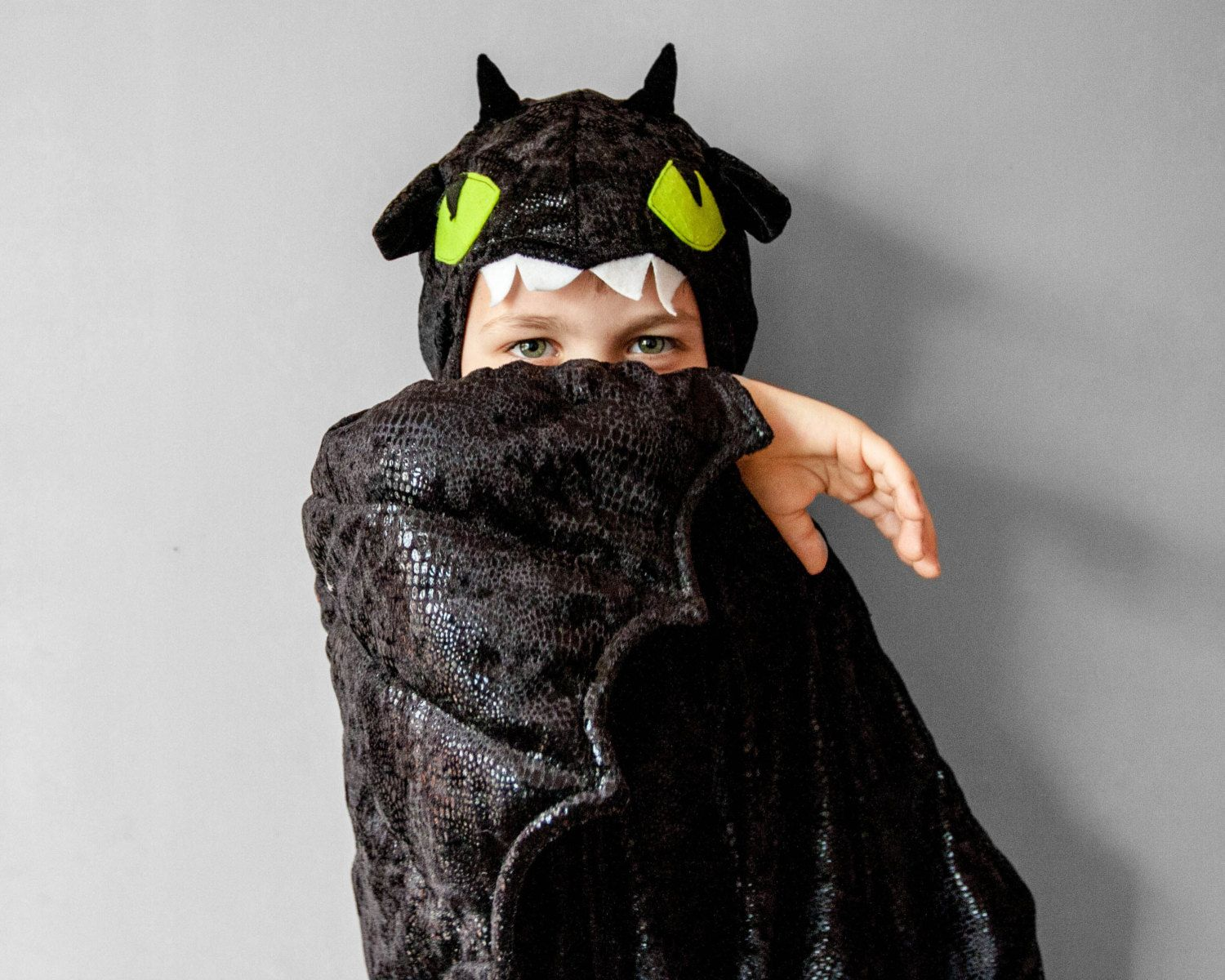 Super-cute How to Train Your Dragon kids' costume - Boing Boing ...