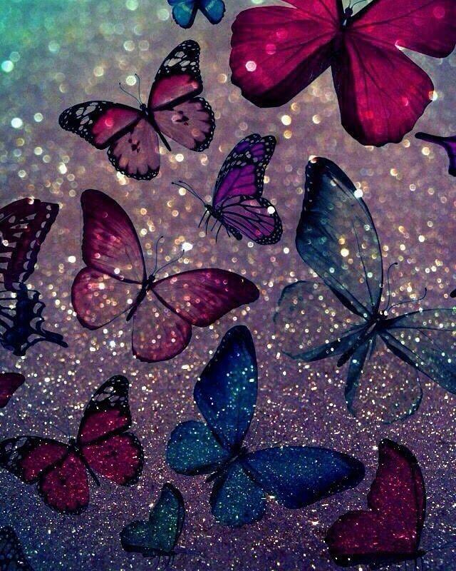 Wallpaper Photogrpahy Love Cute Butterfly Wallpaper Flower Phone Wallpaper Glitter Wallpaper