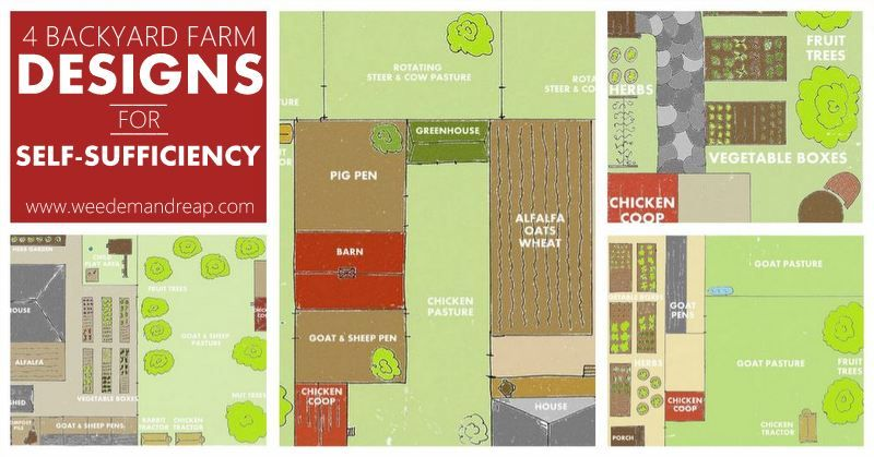 Backyard farm designs for self sufficiency backyard and Homestead layout plans