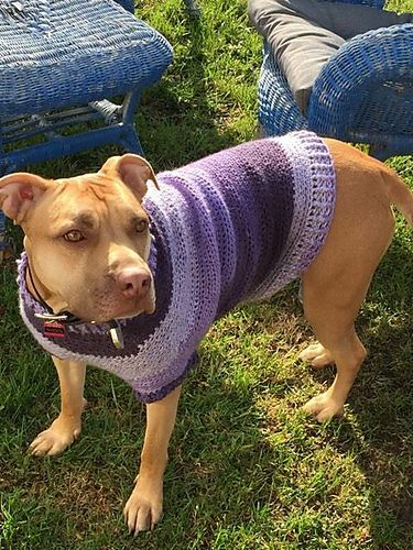 Large Dog Sweater Pattern By Megan Unay Knitting Crochet And