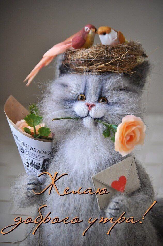 С Добрым утром, Лисичка!!!   Доброе утро, Смешные открытки ...
