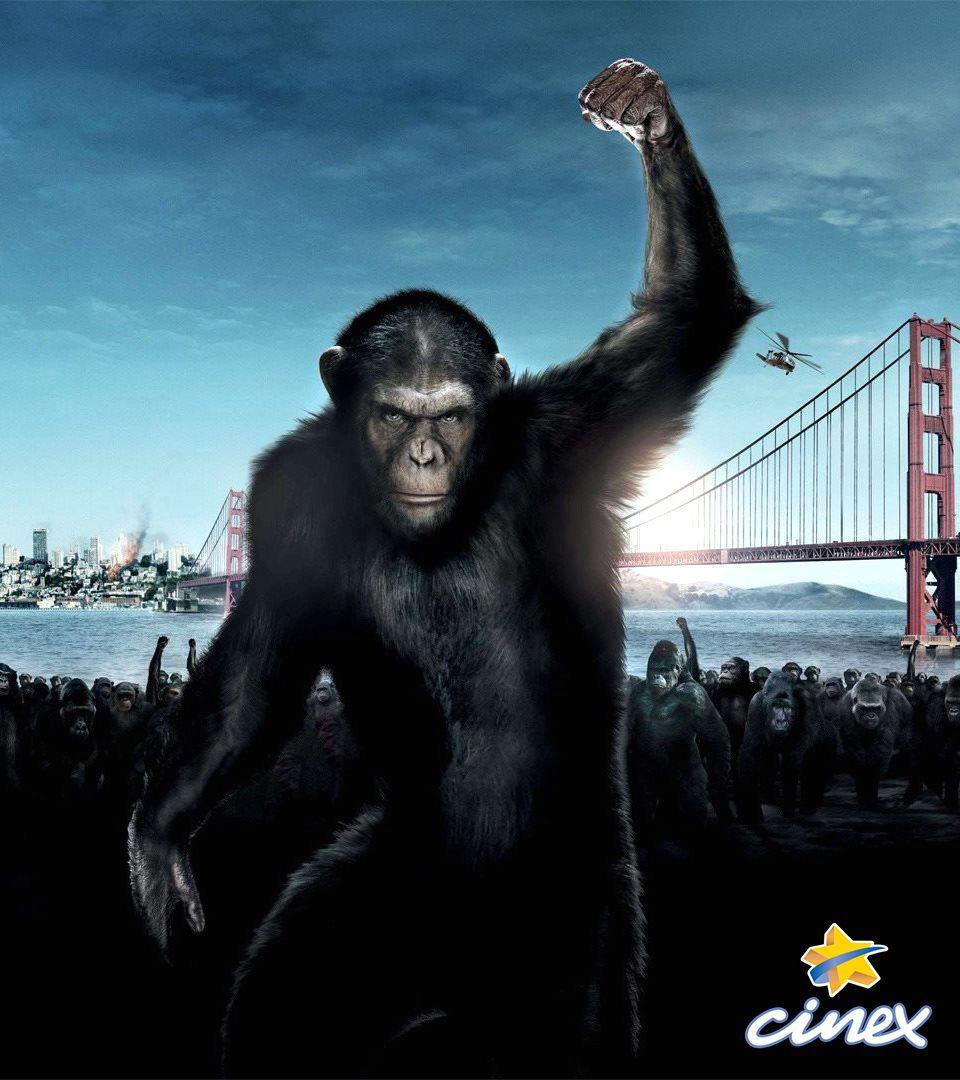 Cine Estreno El de los Simios Confrontación