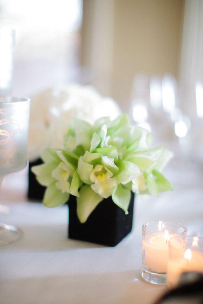 #orchids  Photography: Troy Grover Photographers - troygrover.com Wedding Planning: Brooke Keegan Weddings and Events - brookekeegan.com Floral Design: White Lilac, Inc. - whitelilacinc.com  Read More: http://stylemepretty.com/2012/09/10/montage-laguna-beach-wedding-from-brooke-keegan-weddings-and-events/