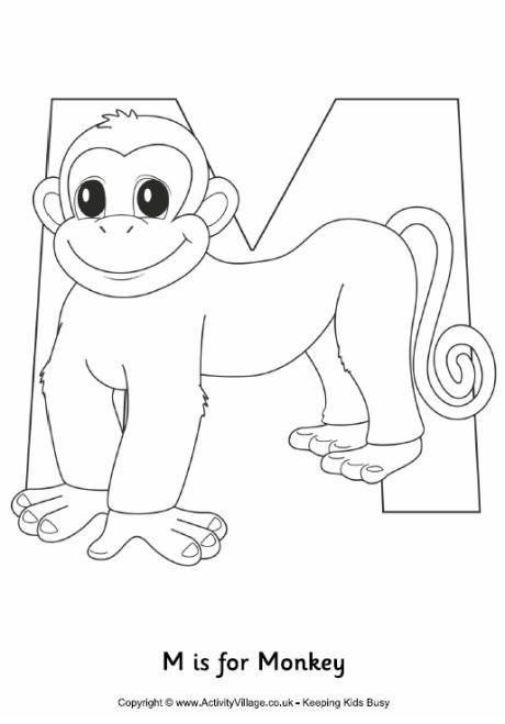 m is for monkey colouring page - Monkey Pictures To Color