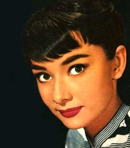 Audrey Hepburn    (Source: hollyhocksandtulips)