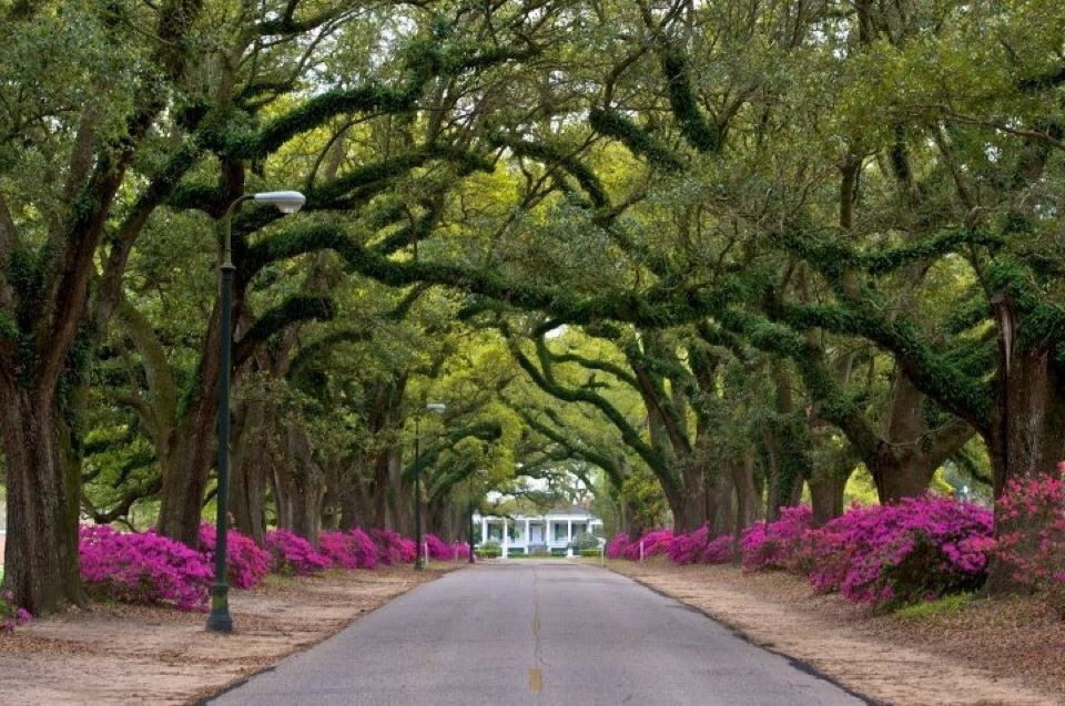 Visit Springhill College While You 39 Re In Mobile Spring